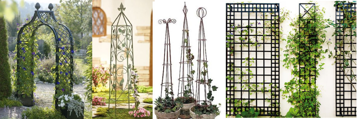 Enjoy Free Shipping browse our great selection of Garden Arches